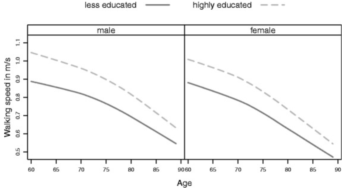 Differences in walking speed based on education and age[^2]
