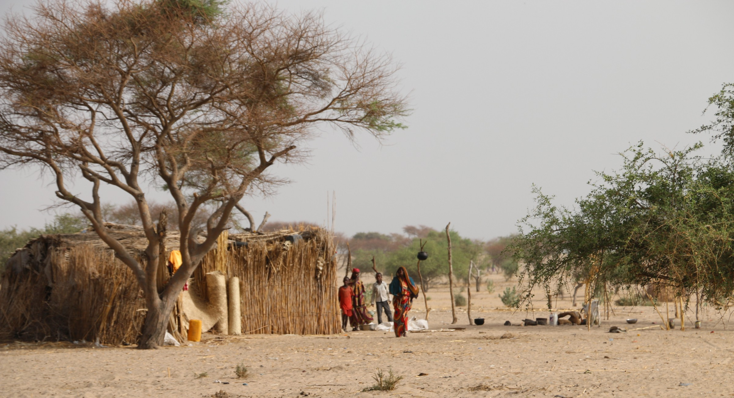 Thousands Of City Children Not Getting >> Emergency School Meals For Thousands Of Children Uprooted By Boko
