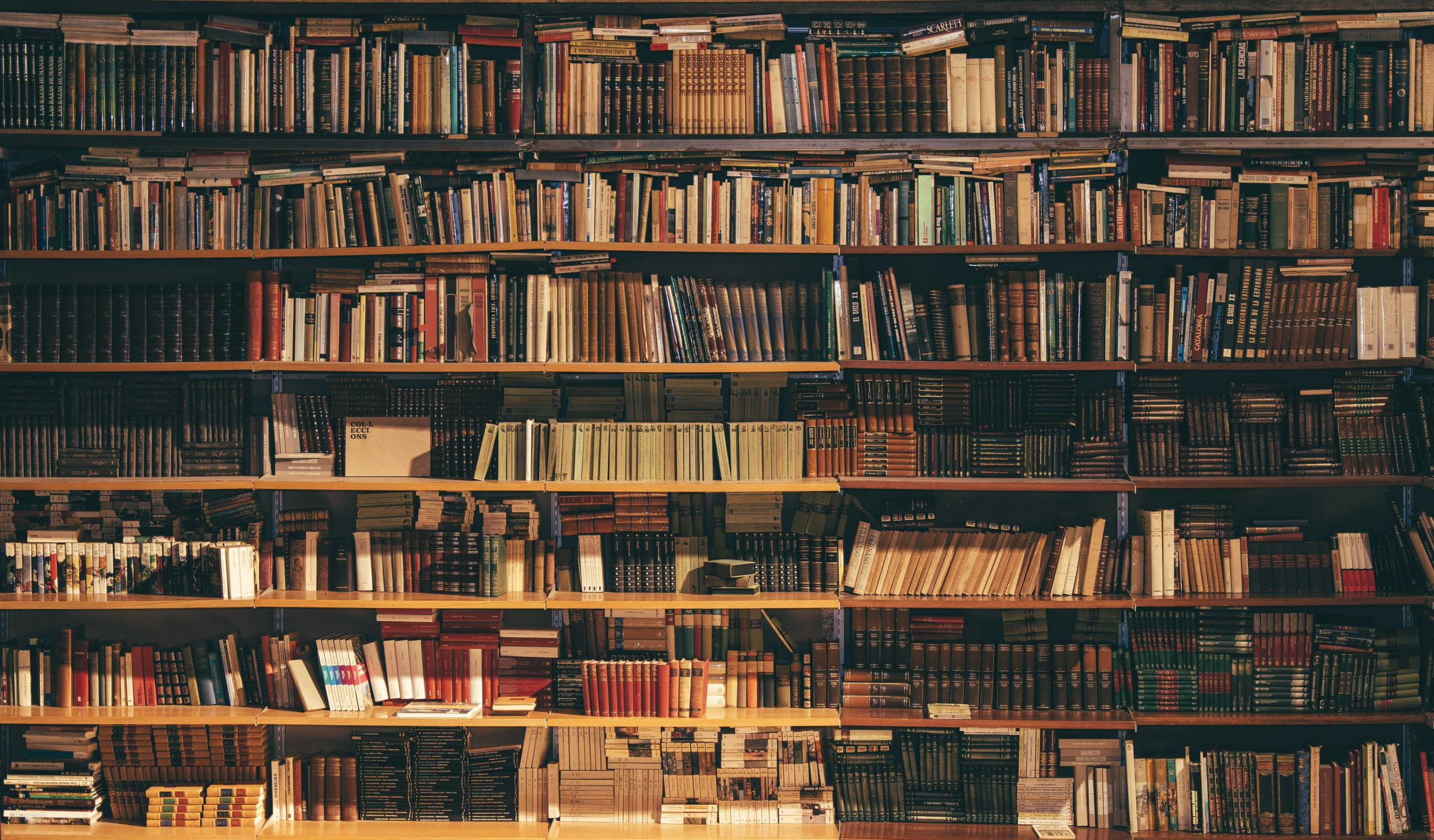 10 Things You Might Not Know About Wikipedia Library In Python