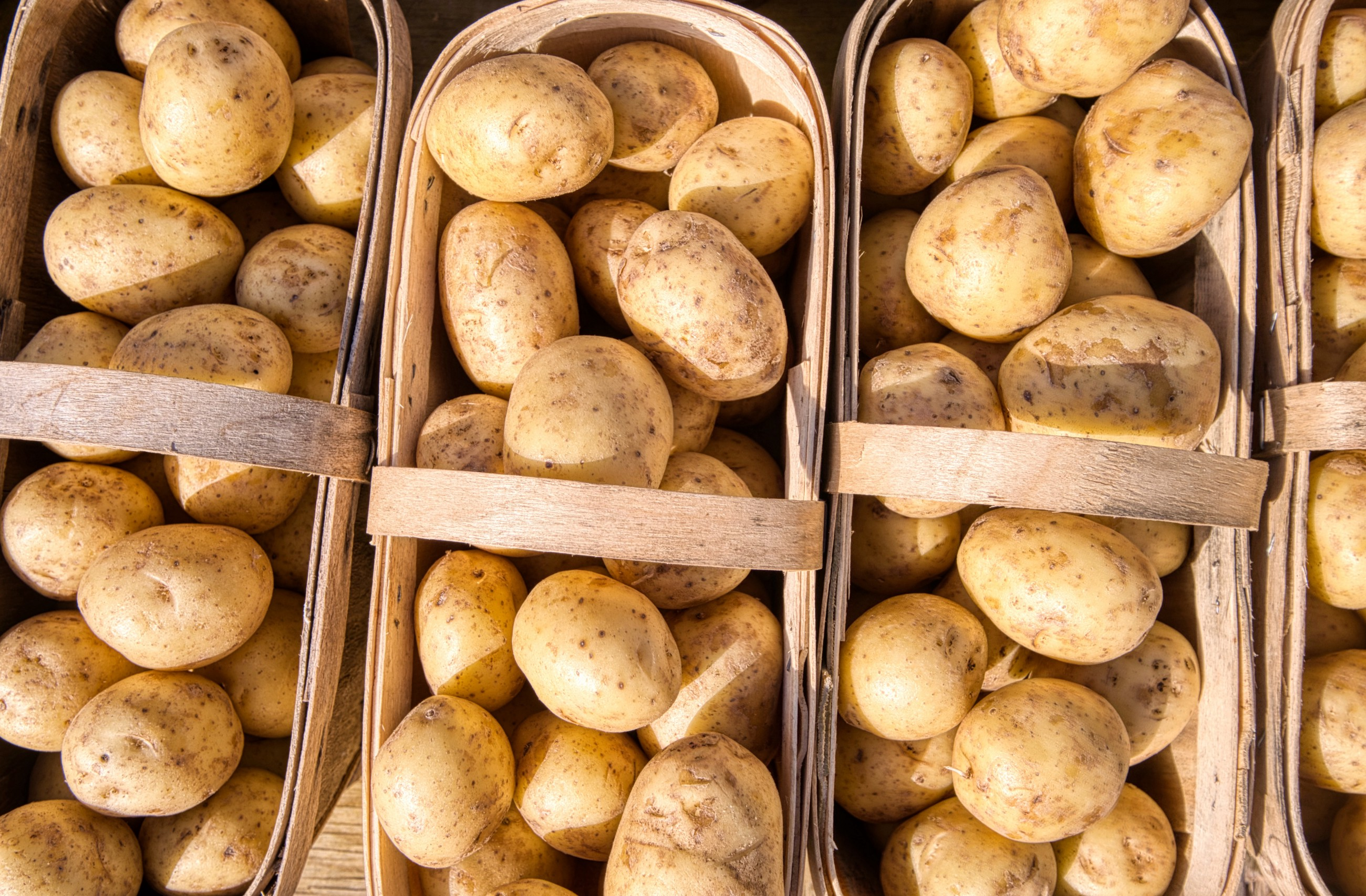 I Ate Only Potatoes for an Entire Week. It Was a Weird, Fun Challenge.