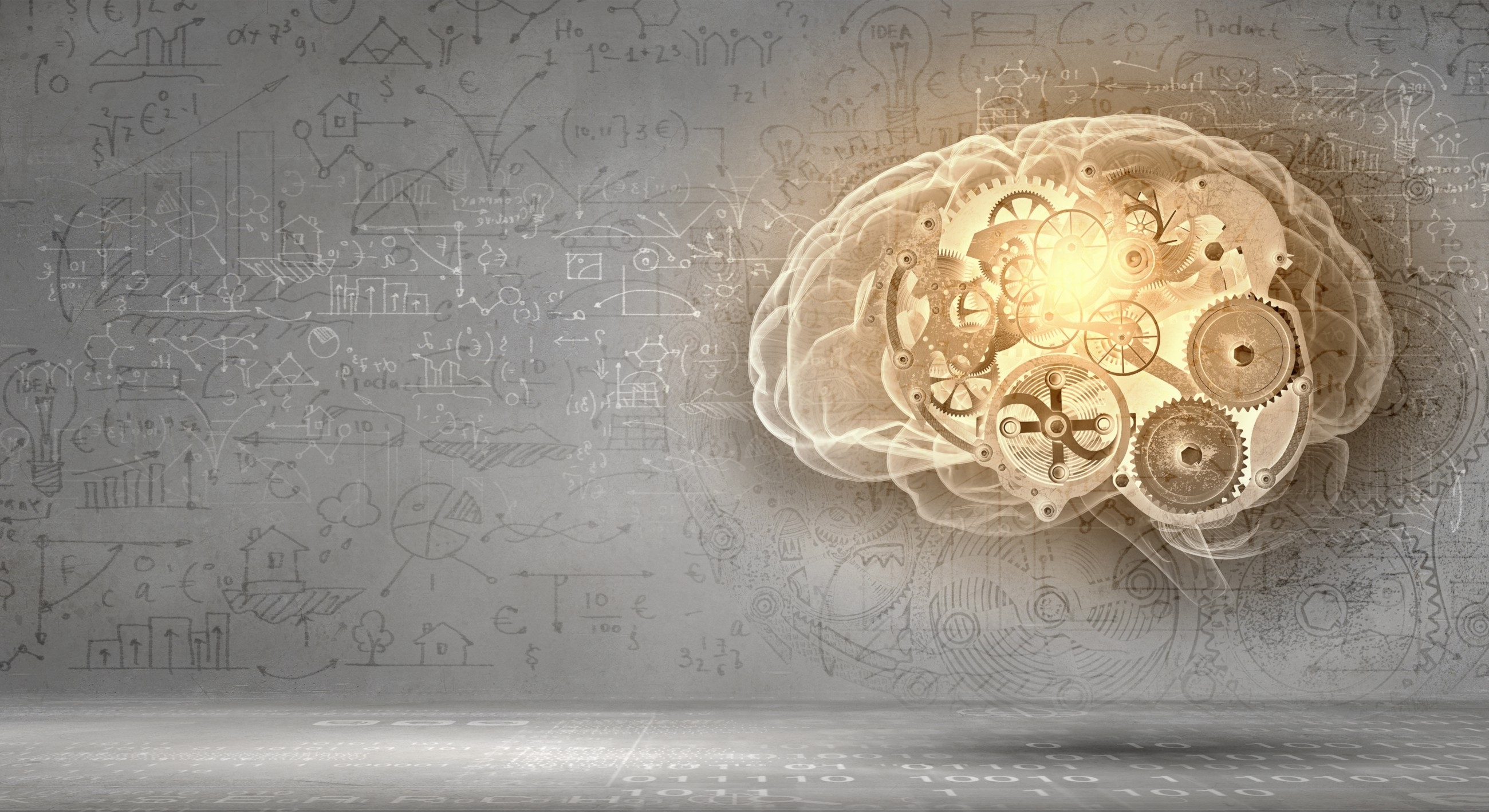 5 Of The Top Nootropics To Boost Your Mind Power The Syndicate