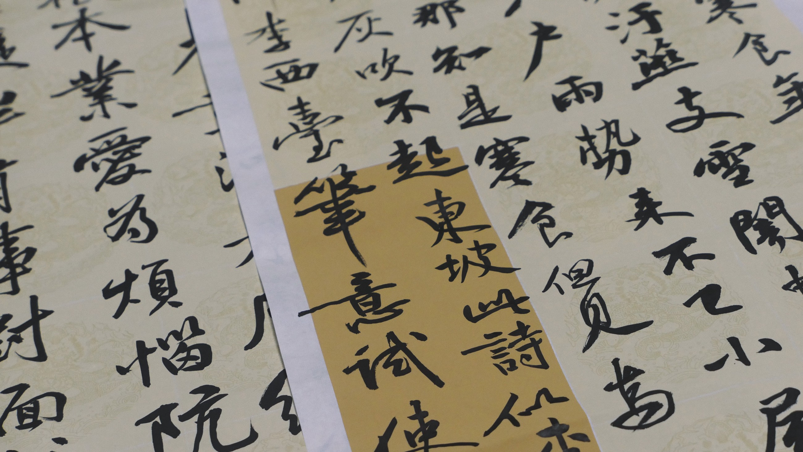 Chinese Natural Language (Pre)processing: An Introduction