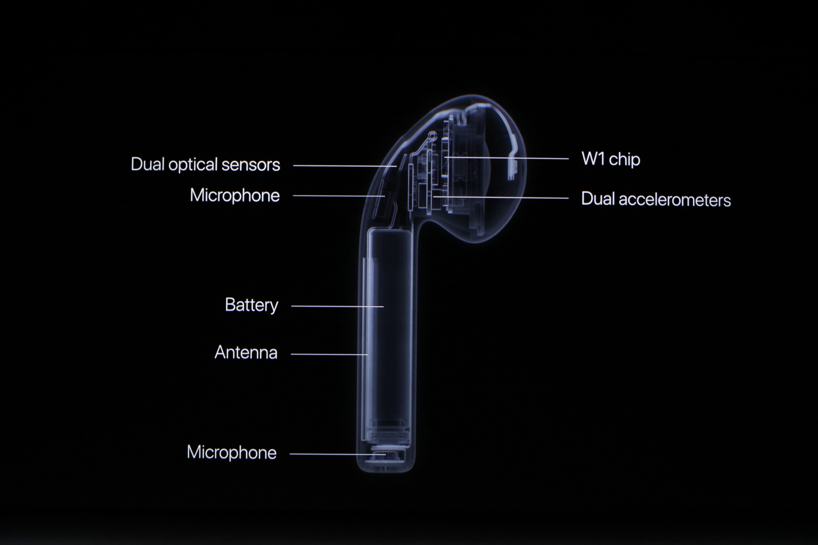 What Really Happens to AirPods When They Die