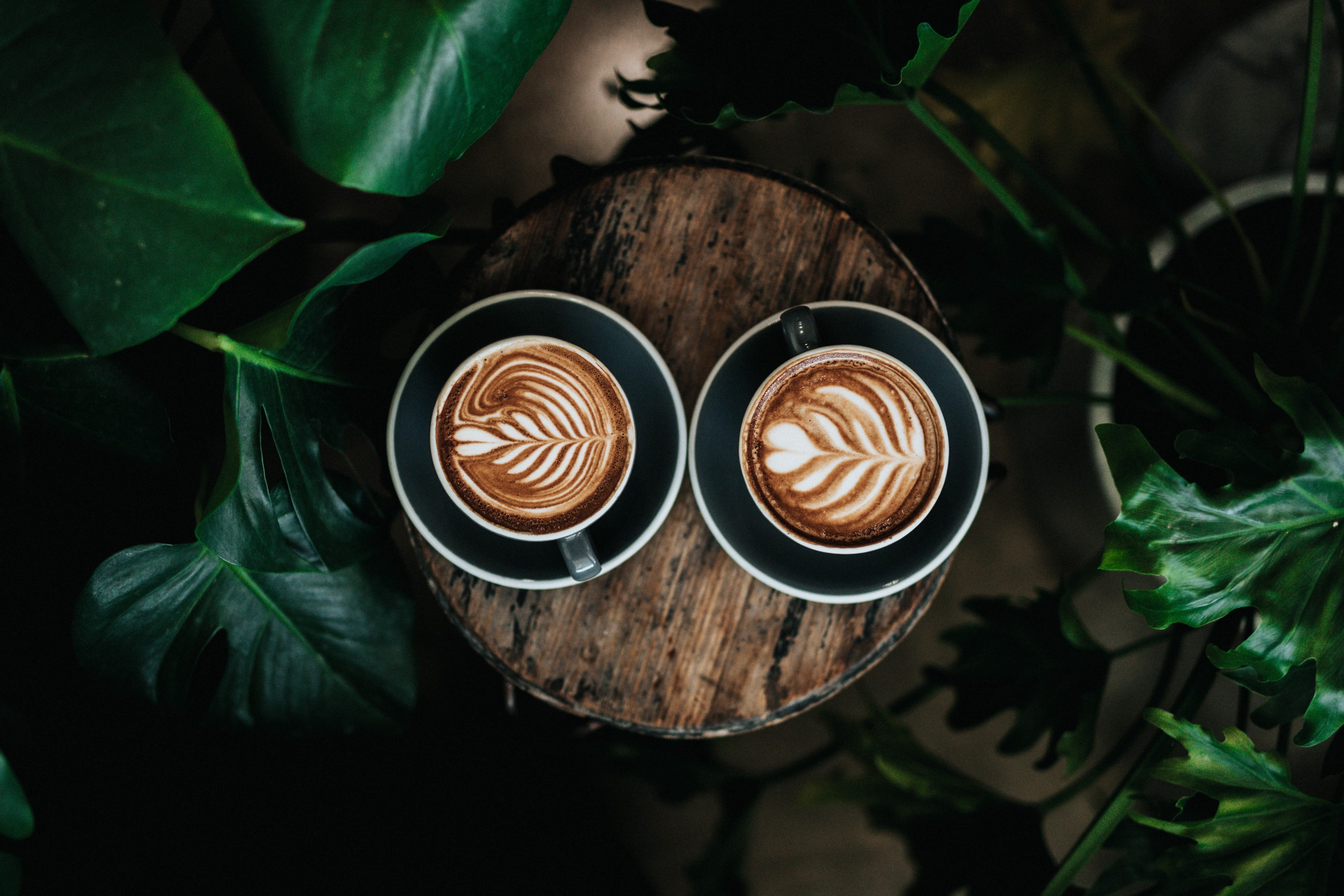 Is Coffee Really Just Socially Acceptable Addiction?