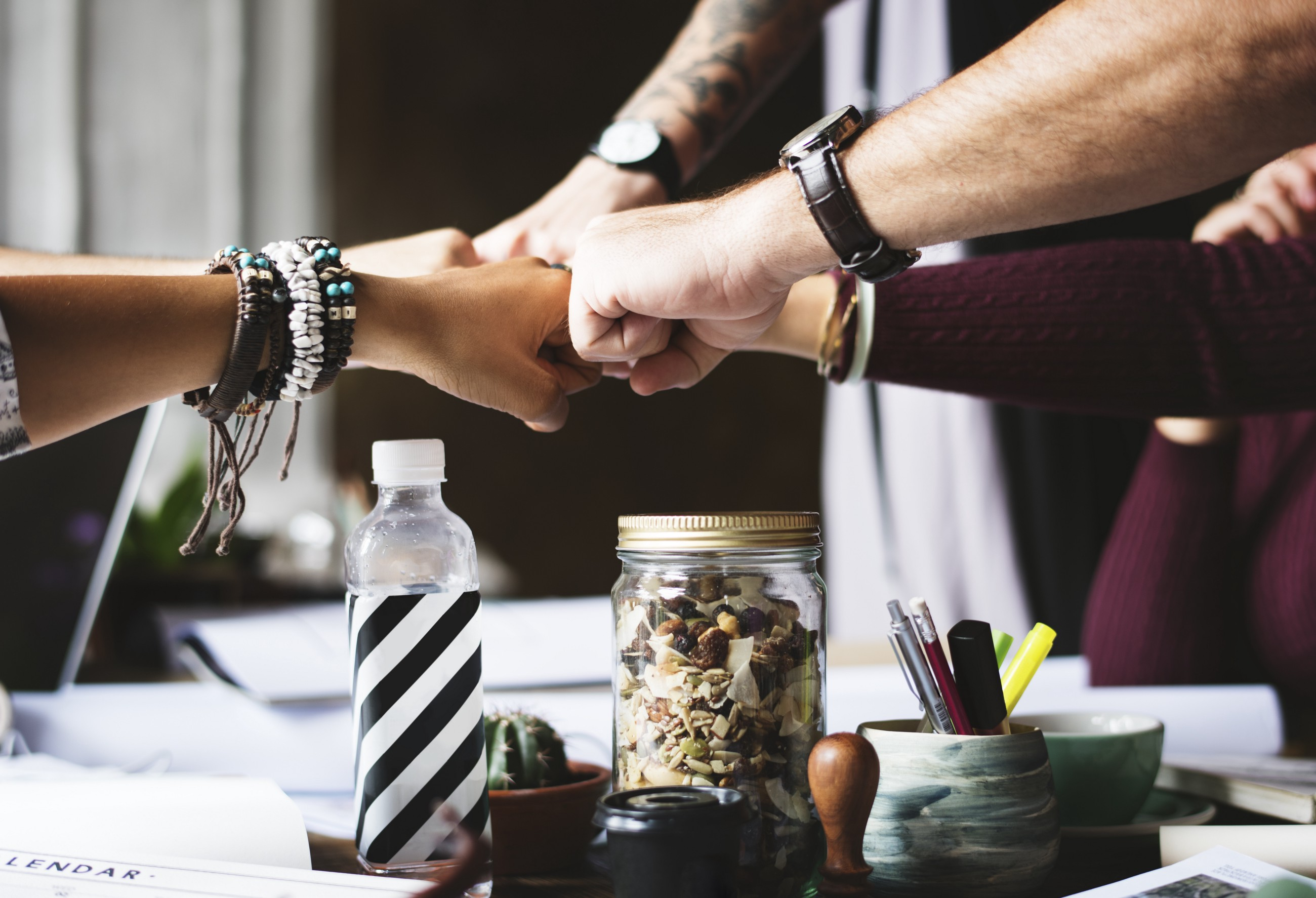 The Roles of the Product Manager and Product Owner