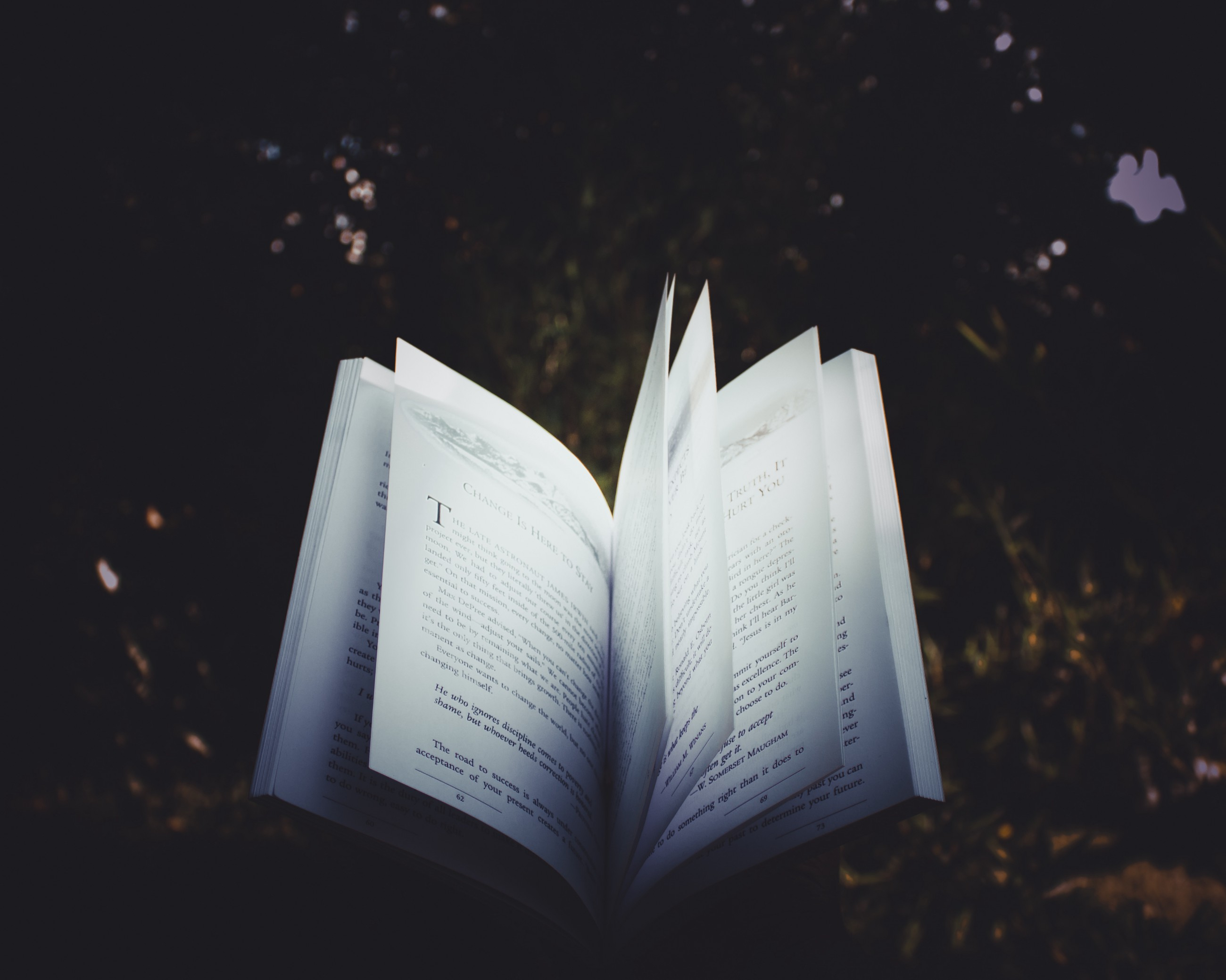 Create An Outline For The Book You Desperately Want To Read