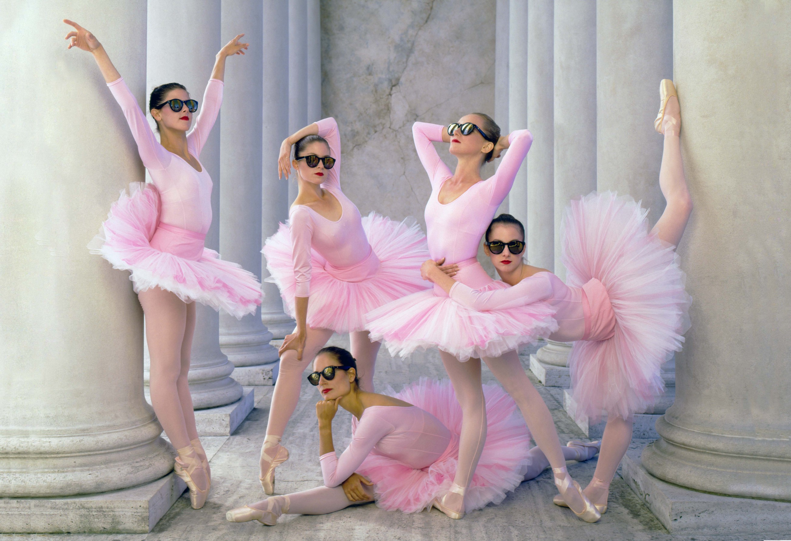 Tale of the Dangerous Pink Tutus