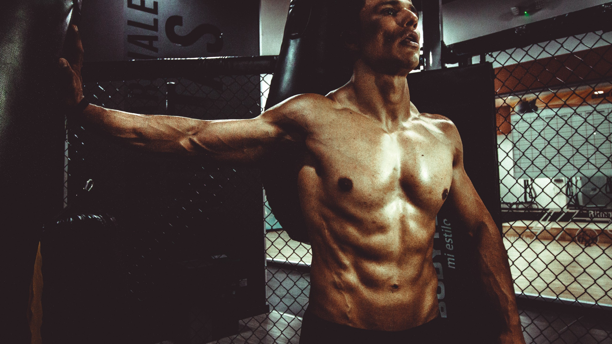 e774cfbc6a8 The Definitive Workout Guide To Building Bigger