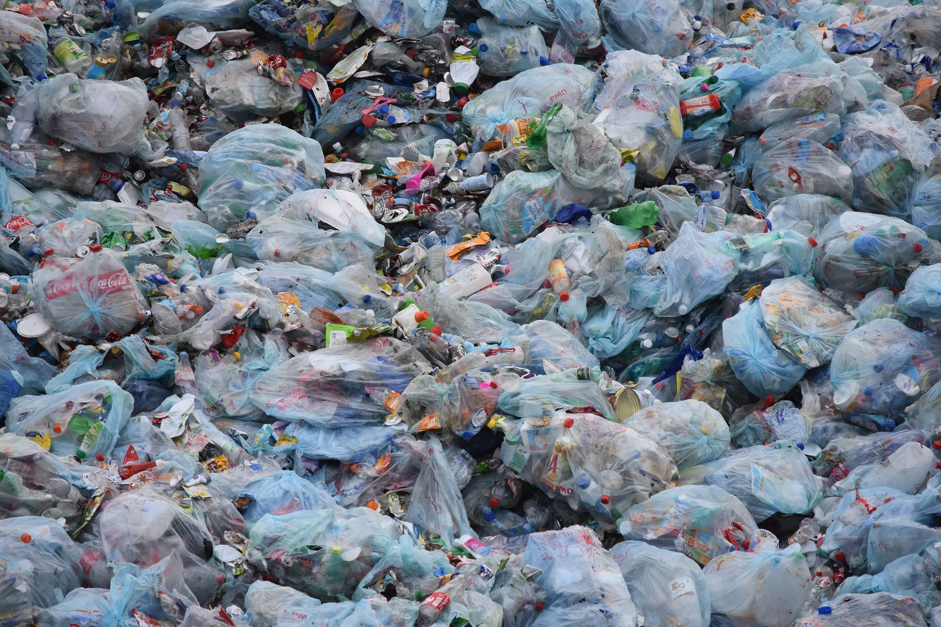 essay on plastic bags are convenient and should not be banned