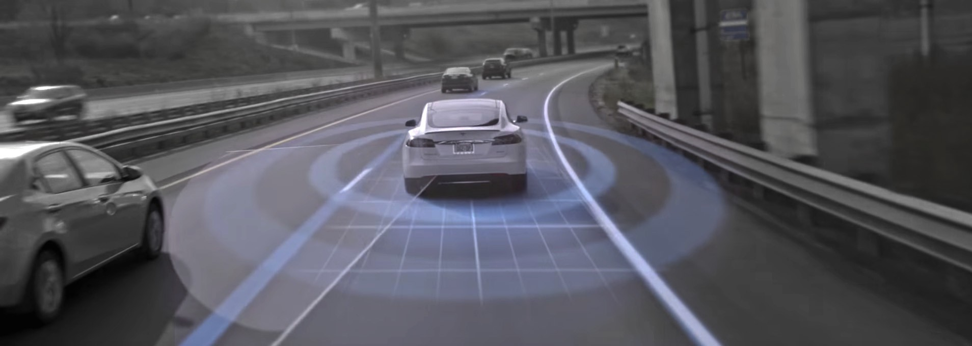 Tesla Motors Club >> Disappointing 83 Of Tesla Motors Club Members Unhappy With Autopilot