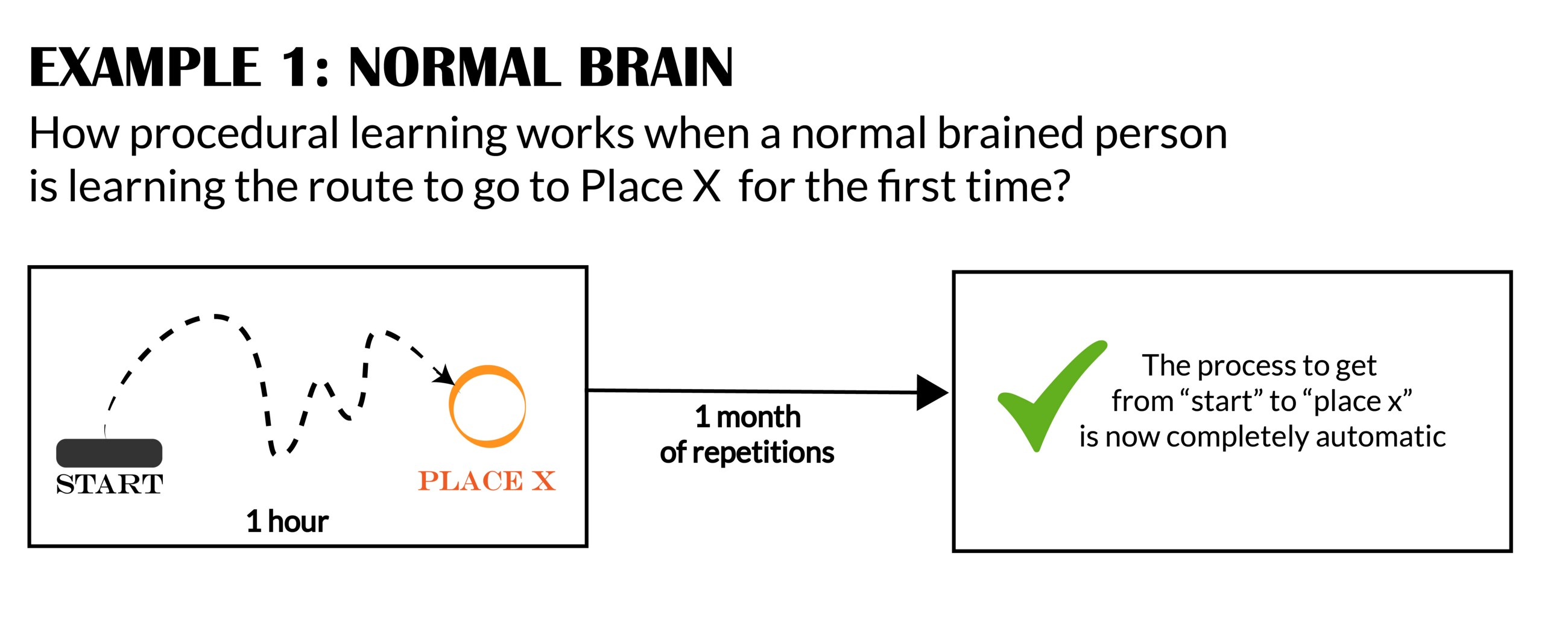 Implicit Learning Works Differently >> Into The Dyslexic Brain 4 Illustrated Differences To Guide You