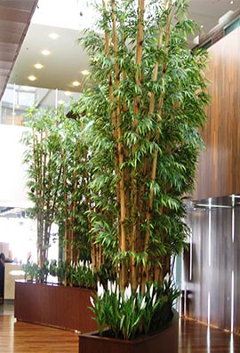 how to use artificial plants and trees in a stylish way?