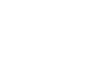 G3 Partners