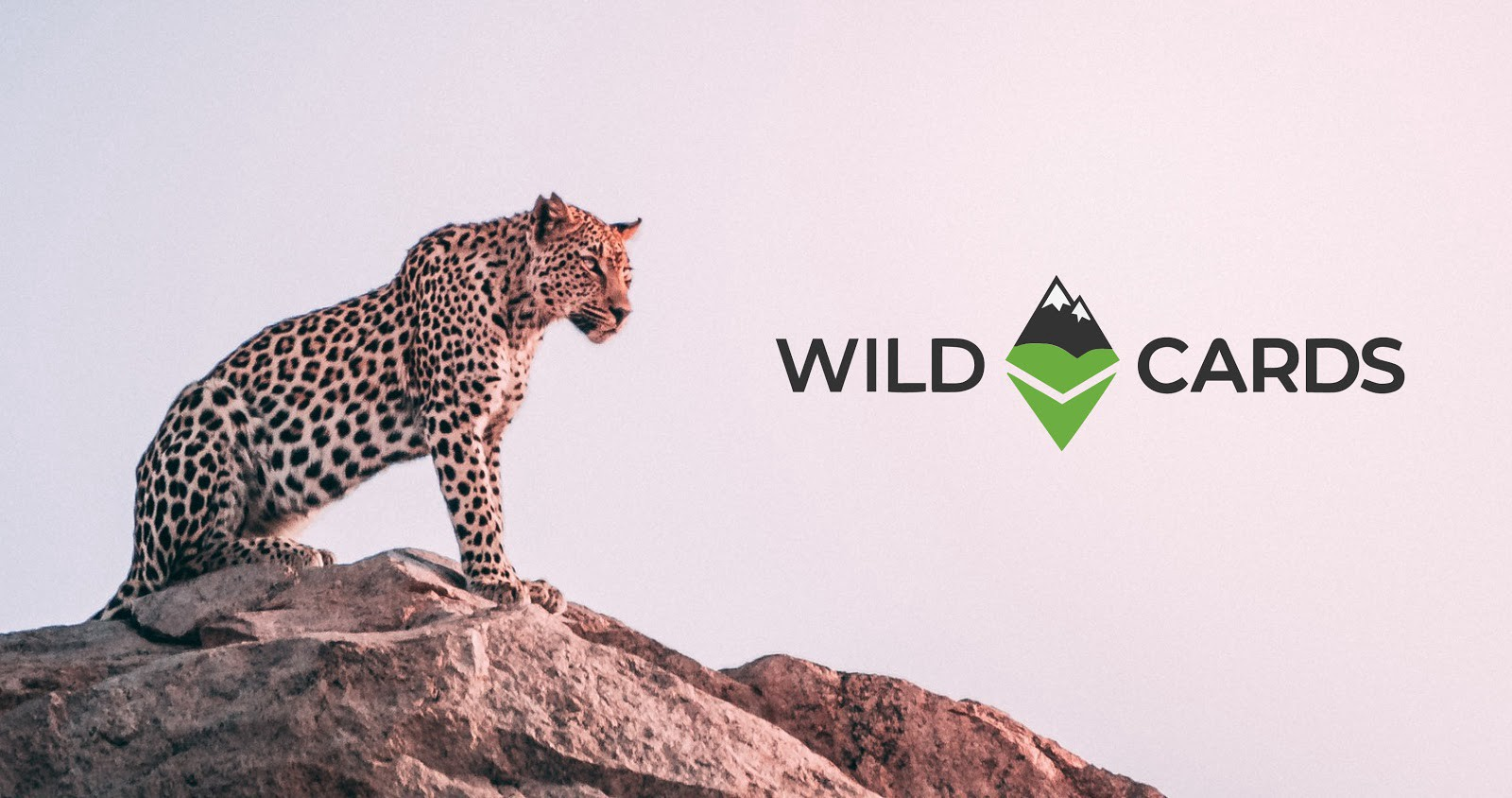 Care about a wild animal? Want to follow its journey, help protect it and stand to make a profit? Visit [Wildcards](https://wildcards.world/#).