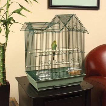 Another Crucial Parakeet Bird Cage Information Is About How To Keep The In Warm So Your Pet Can Always Live Comfortable And Healthy Even