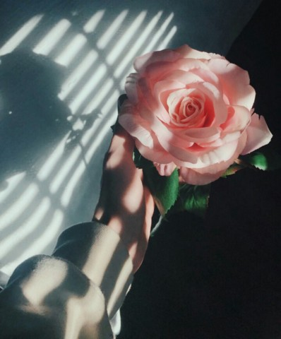 the theme of letting go in william faulkners a rose for emily Find the quotes you need in william faulkner's a rose for emily, sortable by theme, character, or section from the creators of sparknotes a rose for emily quotes from litcharts | the creators of sparknotes.