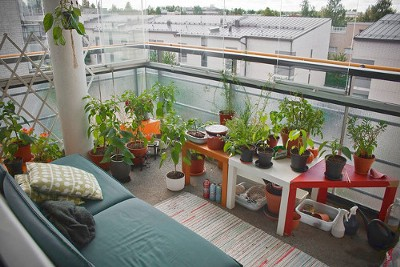 Turn your apartment into a small garden desiree thomson for Indoor gardening apartment