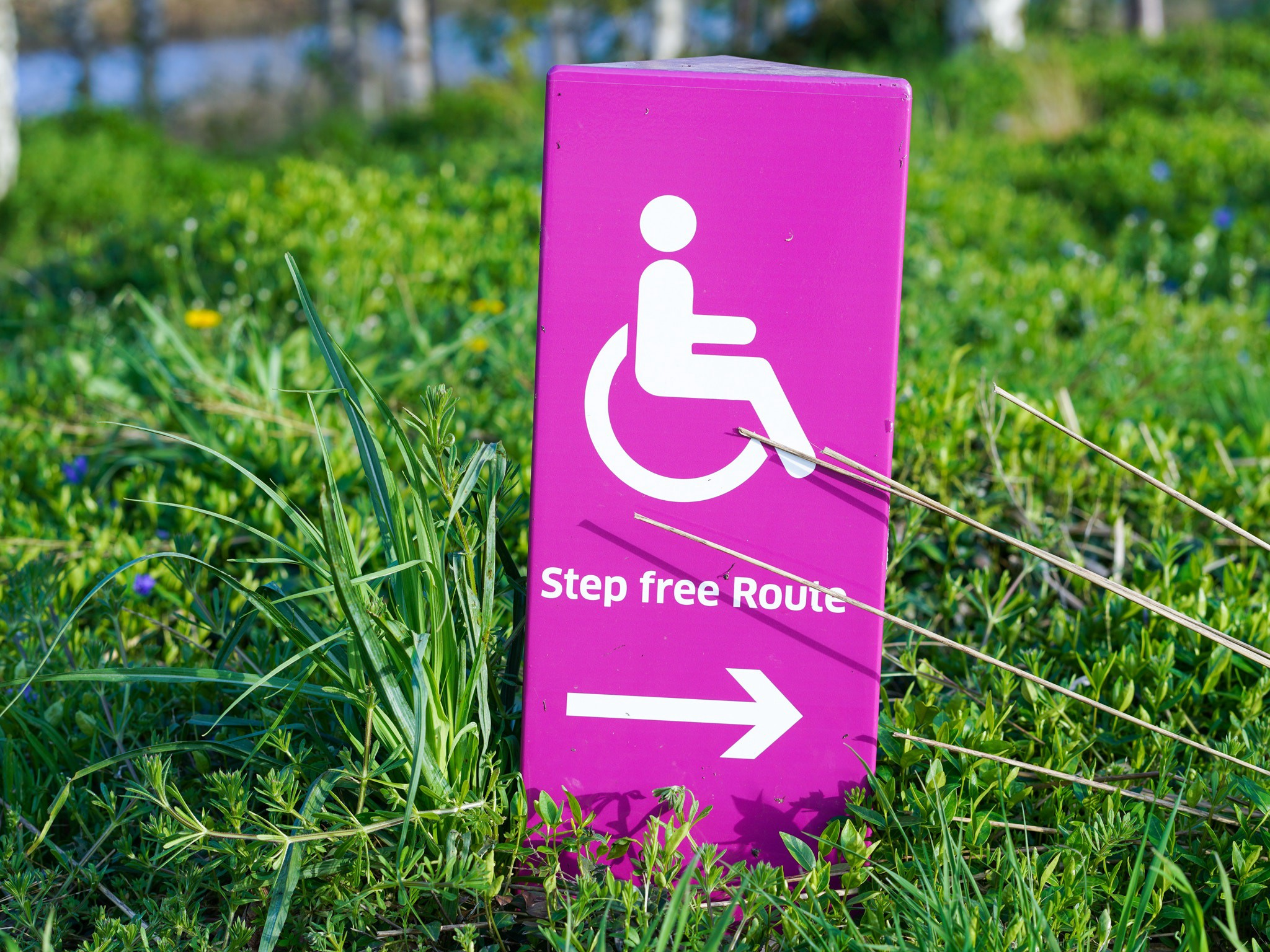 A sign in some grass pointing to the accessible route.