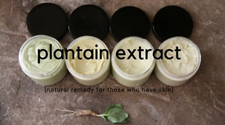 Hand Procured Plantain Extracts. Put the best stuff on your skin, from the earth. Grown on Peoria's only Urban Farm. You Deserve quality and integrity. Get it here. Support Local Business.