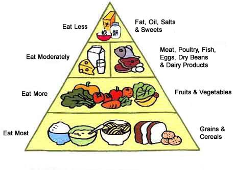 That Whole Food Pyramid Thing Yea Thats A Lie Jay Duquette Medium