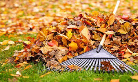 Image result for How to Get Your Home Ready for The Fall Weather