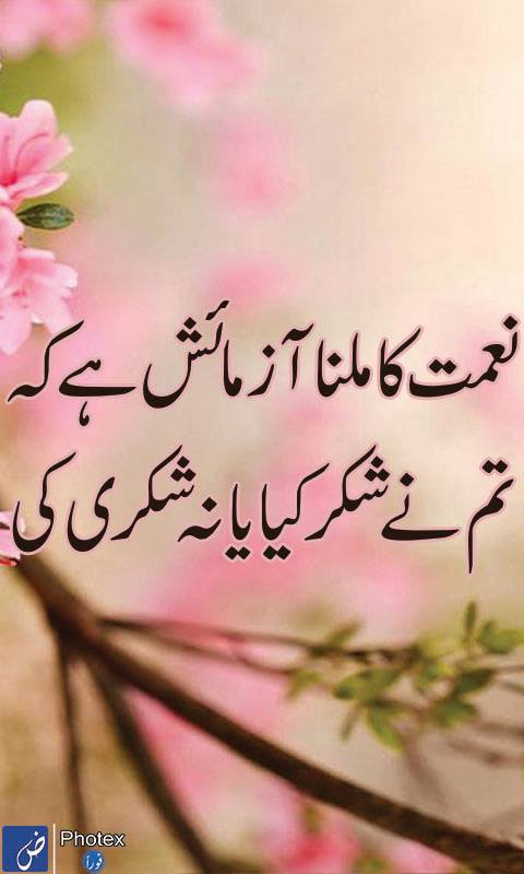 Love Quotes For Him Sms In Urdu : ... Urdu Sad Poetry Urdu Shayari Urdu Sms Urdu Valentine Love Quotes