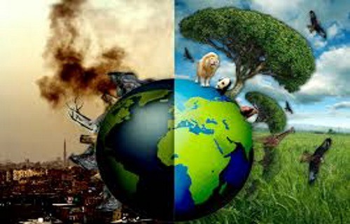 Image result for saving the planet