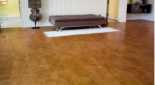 Wanted To Know About Cork Flooring Hema Josh Medium