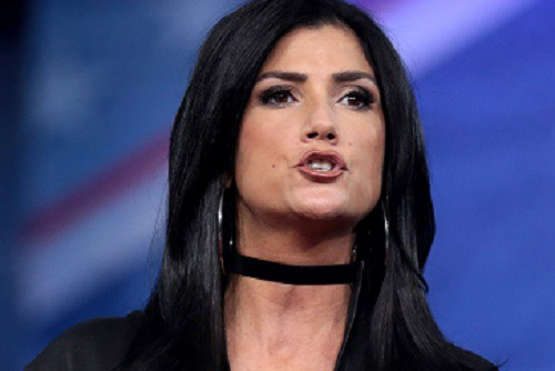 Did The Nras Dana Loesch Just Admit To Tax Fraud