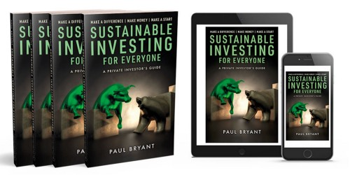 Sustainable Investing for Everyone—A Private Investor's Guide