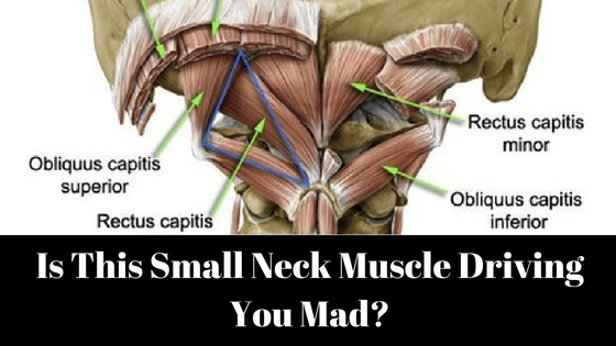 Is This Small Neck Muscle Driving You Mad? – Dr. Jonathan Chung – Medium