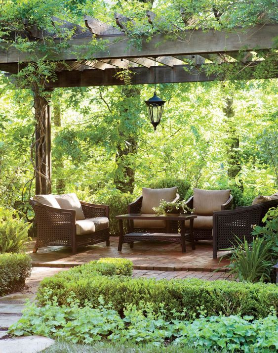 How To Create Own Terrace Garden With Simple Steps — An Easy Guide
