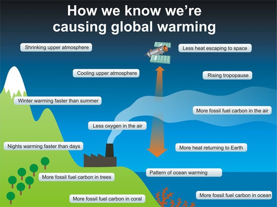 Graphic: How We Know We're Causing Global Warming – ThinkProgress