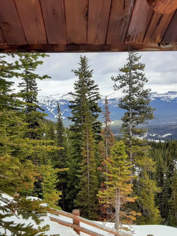 The view of trees, mountains and sky from a wooden hut.