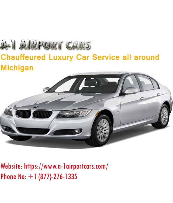 Detroit Airport Transportation Call Now 1 877 276 1335