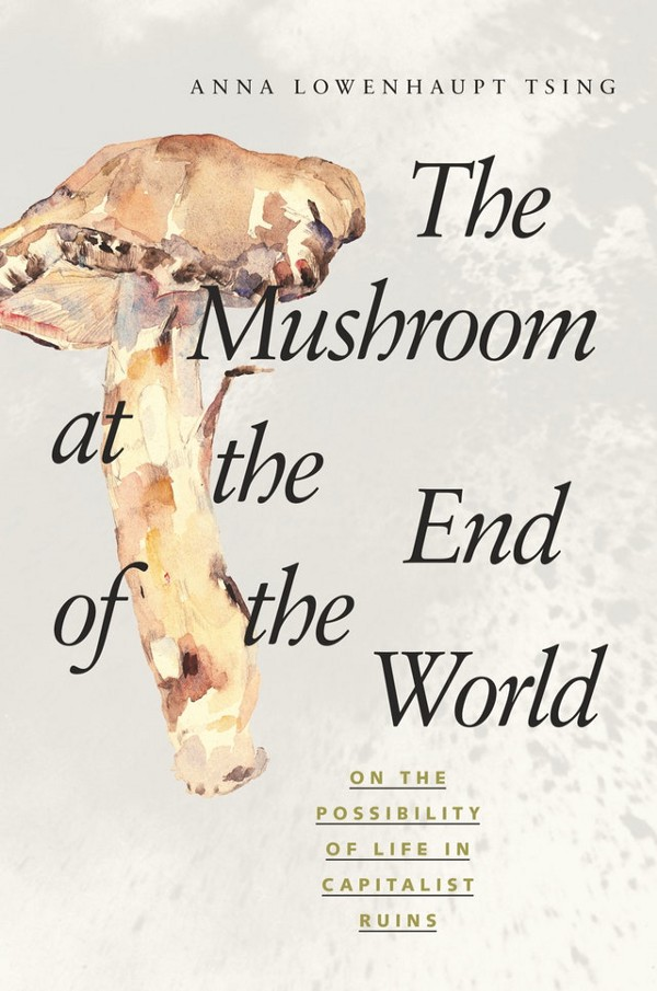The Mushroom at the End of the World.