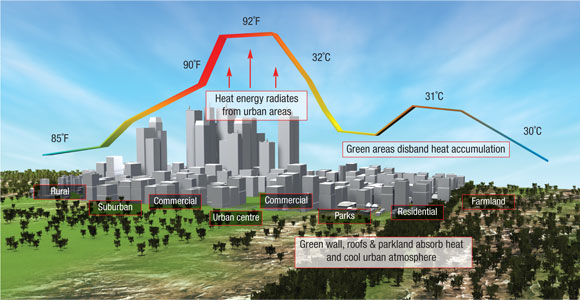 Urban-heat-islands-infographic 2