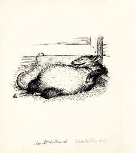 The rat was swollen to twice his normal size, Charlotte's Web, page 147 illustration, 1952, GM Williams