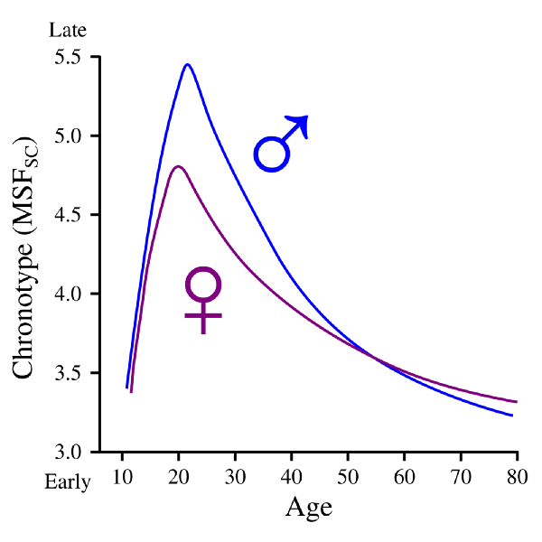 male and female differences with chronotype