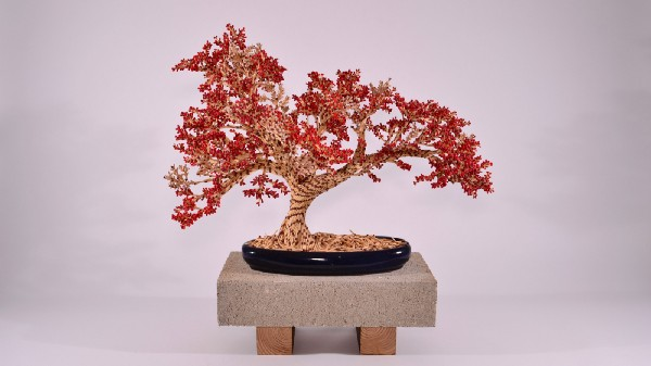 A bonsai tree made out of matchsticks