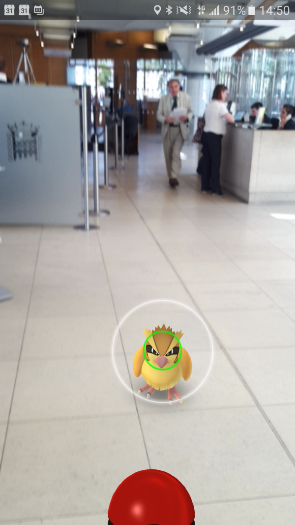 A vicious looking [Pidgey](http://bulbapedia.bulbagarden.net/wiki/Pidgey_%28Pokémon%29) that got through security in a [UK Parliament](https://en.wikipedia.org/wiki/Portcullis_House) building. Characters in the Pokémon world don't respect barriers in the real world because the barriers aren't in the data infrastructure.