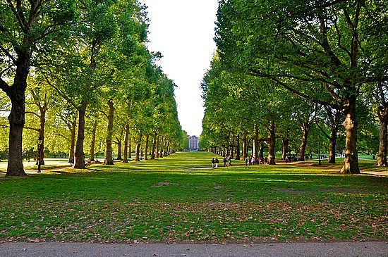 Image result for hyde park london images