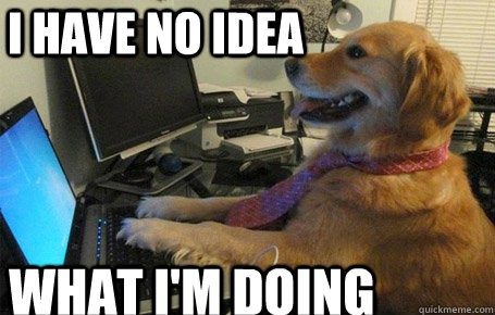 "Meme of a dog wearing a tie at a computer with large text, ""I have no idea what I'm doing."""
