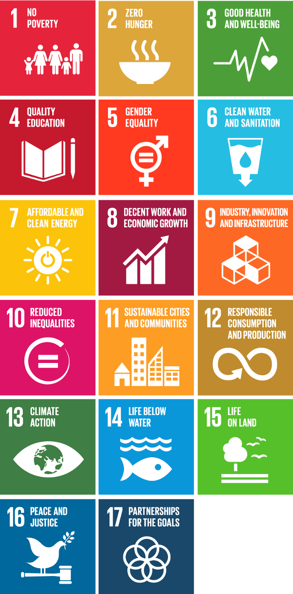 Getting to know the Sustainable Development Goals