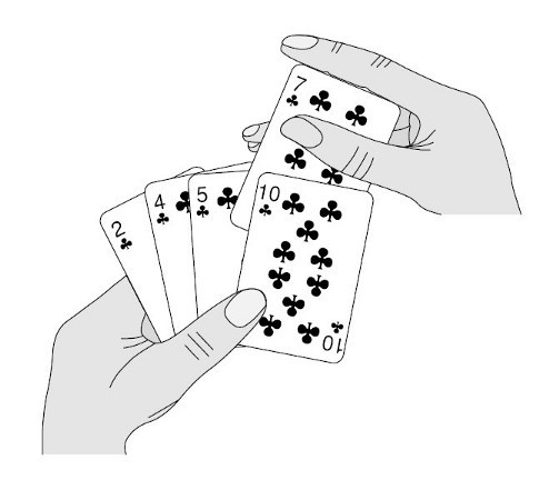 insertion sort steps by playing cards