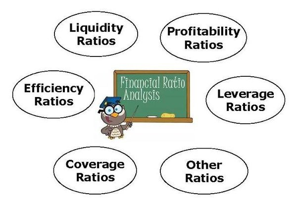 Financial Ratios Every Investor Should Know Before Investing In