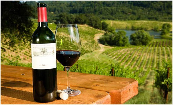 Image result for long island wine tours