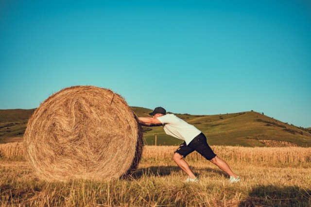 man pushing hay bale: working towards productivity