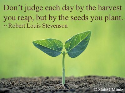Its Not The Harvest You Reap But The Seeds You Sow