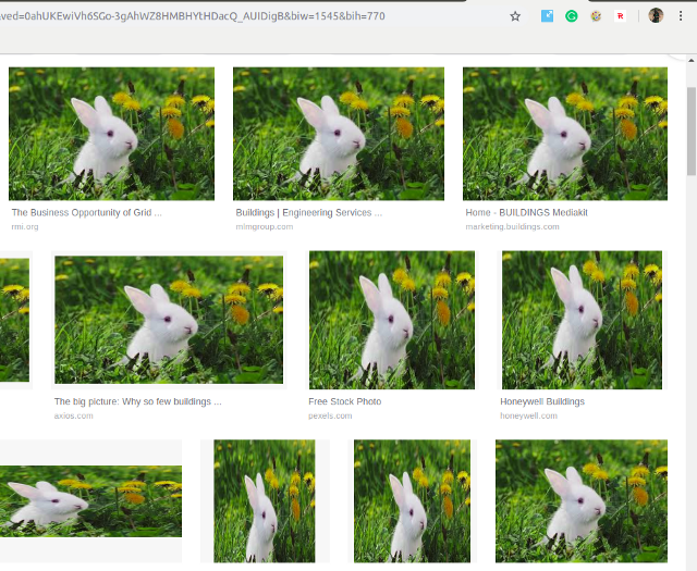 Chrome Extension replace images in a website the output 2
